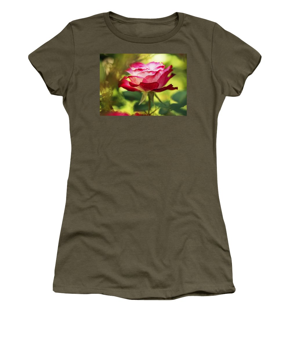 Rose Women's T-Shirt (Athletic Fit) featuring the photograph Beautiful Pink Rose Blooming In Garden by Vishwanath Bhat