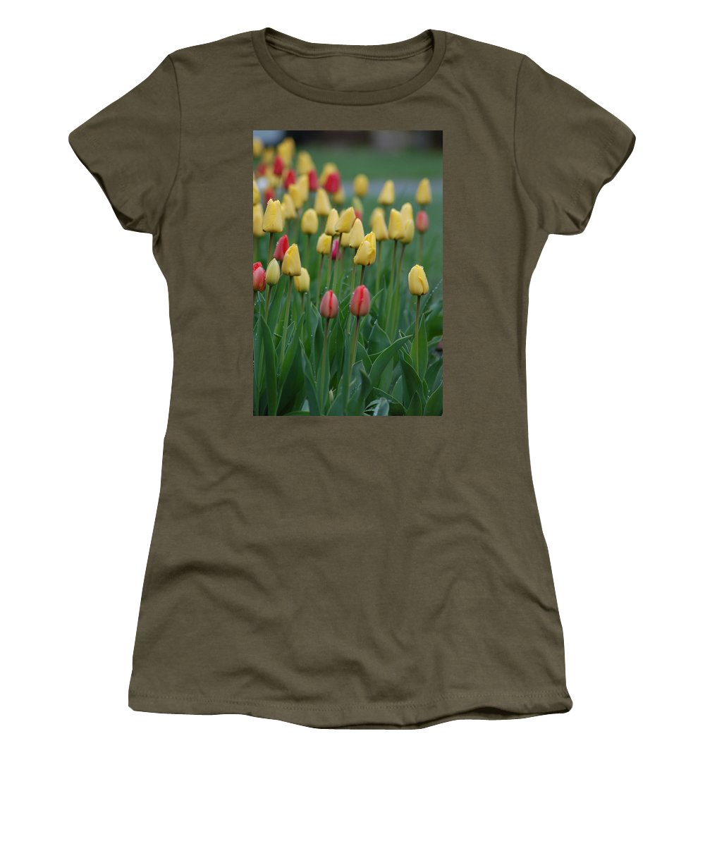 Tulips Women's T-Shirt (Athletic Fit) featuring the photograph Beautiful Tulips by Donna Bentley