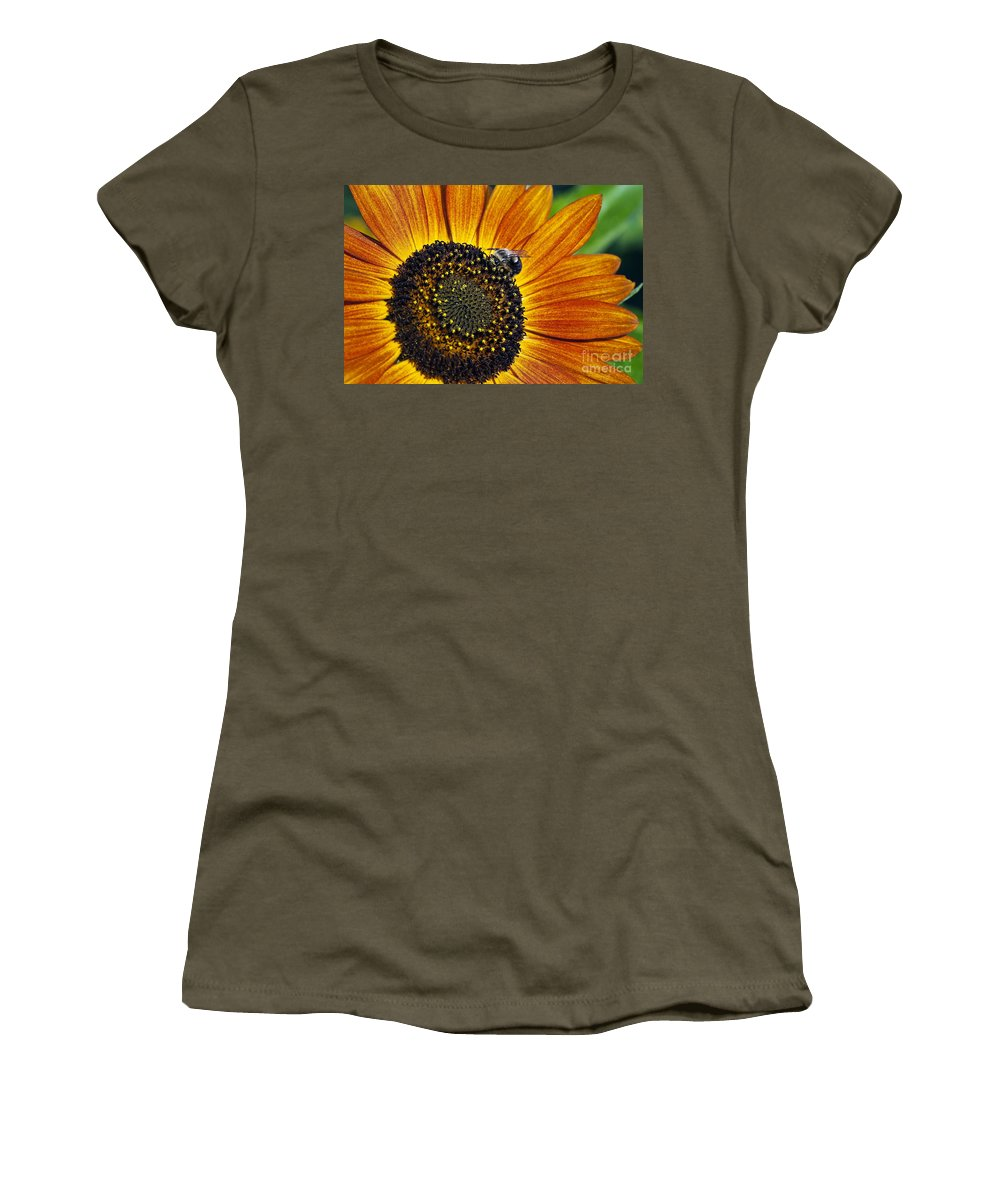 Helianthus Annuus Women's T-Shirt featuring the photograph Bee And Sunflower. by John Greim