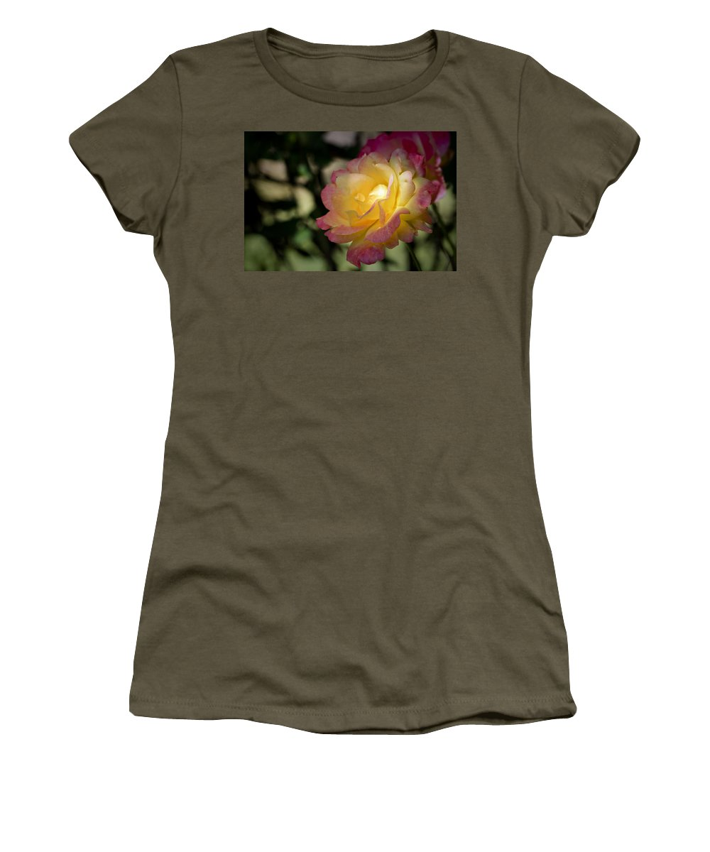 Rose Women's T-Shirt featuring the photograph Bettys Rose by Teresa Mucha