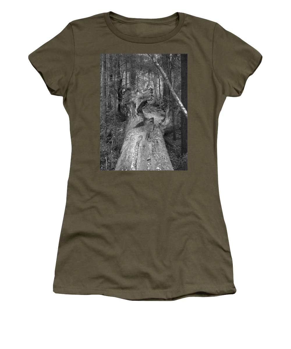 Landscape Women's T-Shirt featuring the photograph Big Basin 2 by Karen W Meyer
