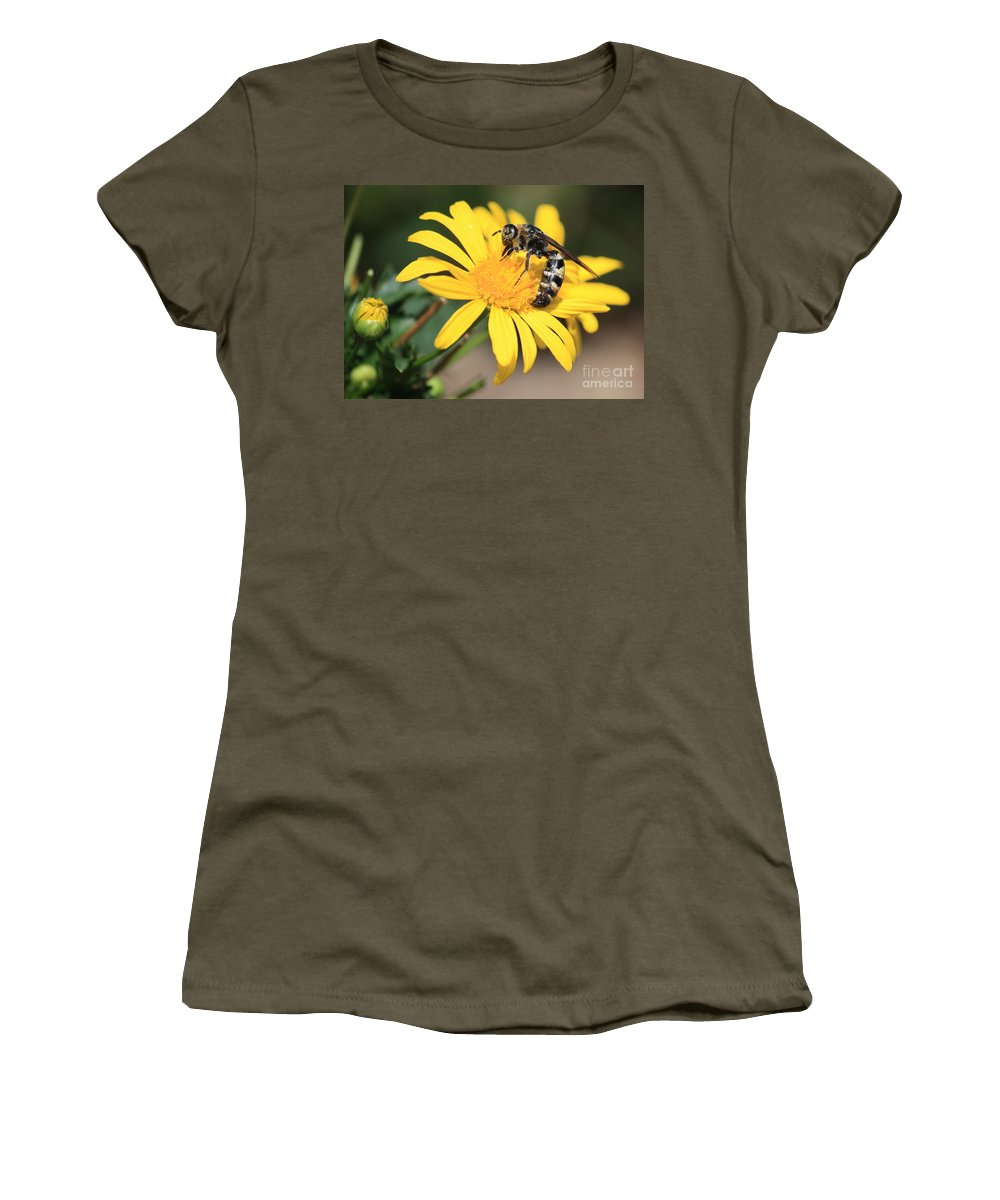 Bee Women's T-Shirt featuring the photograph Big Bee On Yellow Daisy by Carol Groenen