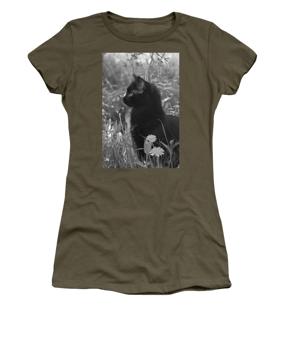 Cat Women's T-Shirt (Athletic Fit) featuring the photograph Bird Watching by Karon Melillo DeVega