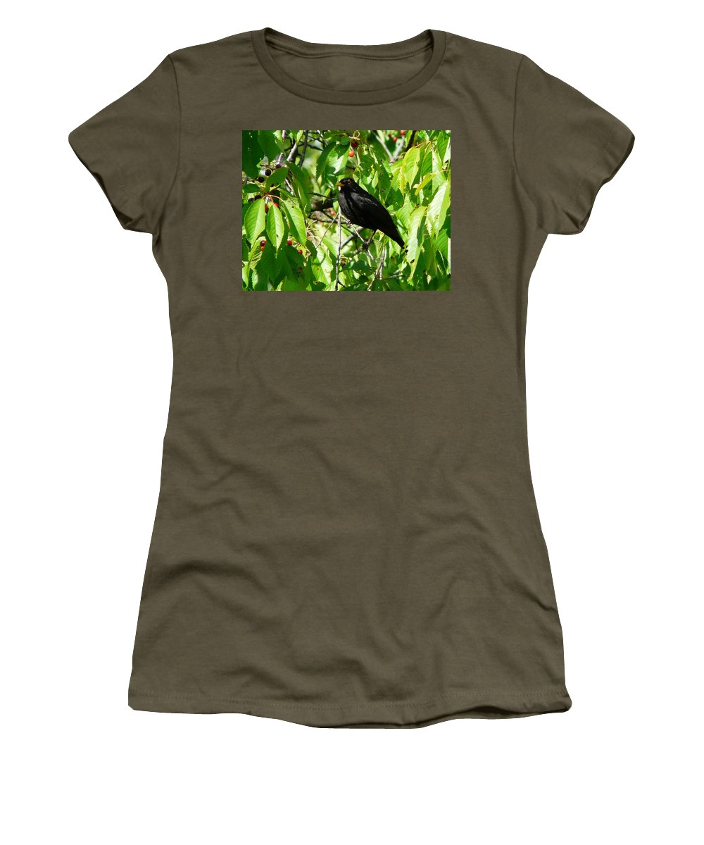 Bird Women's T-Shirt (Athletic Fit) featuring the photograph Blackbird In The Cherry Tree by Valerie Ornstein