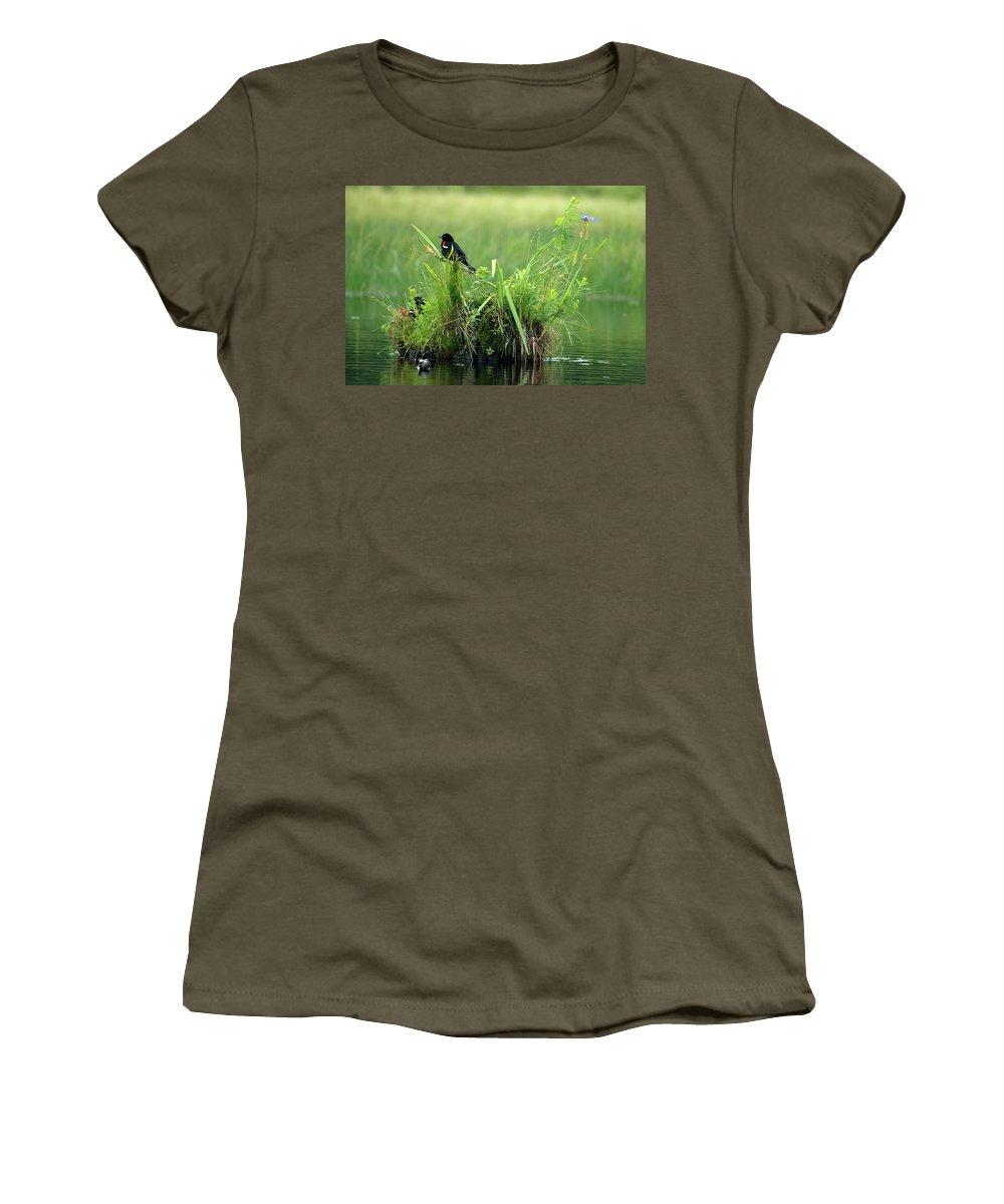 Blackbird Women's T-Shirt featuring the photograph Blackbird Island by Tony Beaver