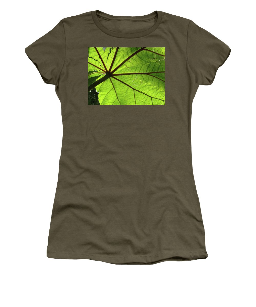 Leaves Women's T-Shirt featuring the photograph Blood Red Feeder by Trish Hale