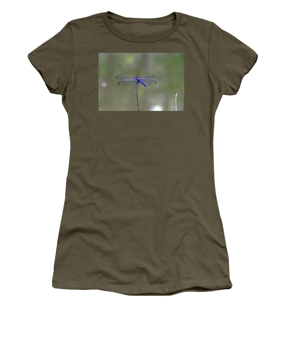 Dragon Dragonfly Blue Pond Lake Nature Tree Outdoors Animals Insects Women's T-Shirt featuring the photograph Blue Dragonfly by Lisa Stanley