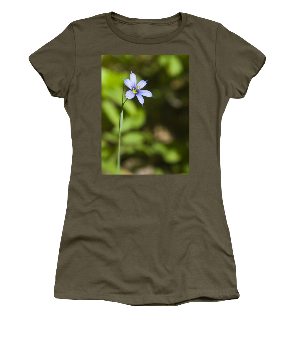 Blue Eye Grass Flower Nature Yellow Green Delicate Small Little Women's T-Shirt (Athletic Fit) featuring the photograph Blue-eyed Grass IIi by Andrei Shliakhau