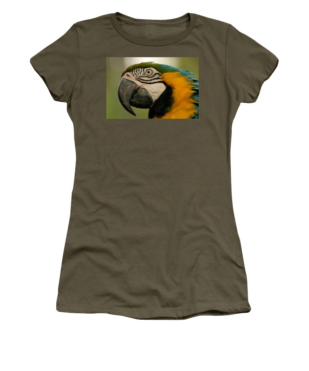 Parrot Women's T-Shirt (Athletic Fit) featuring the photograph Blue Gold Macaw South America by Ralph A Ledergerber-Photography
