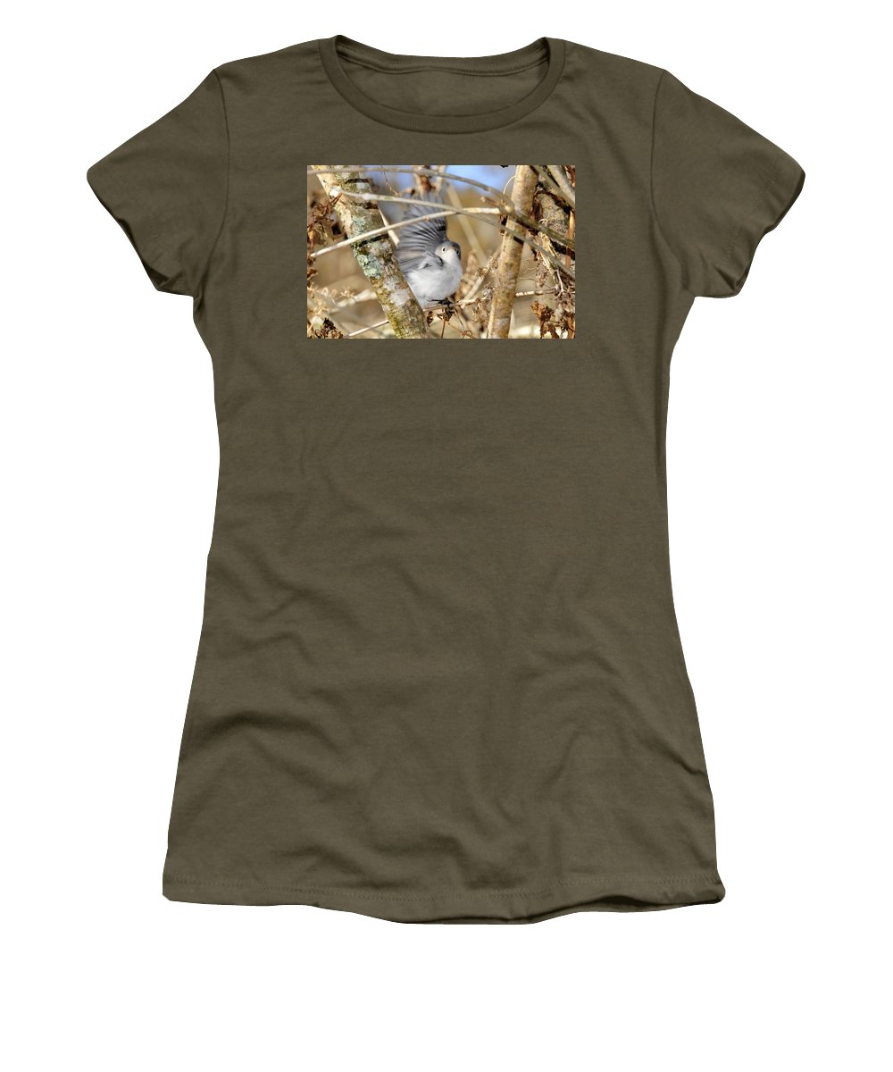Warbler Women's T-Shirt featuring the photograph Blue Gray Gnatcatcher by David Lee Thompson