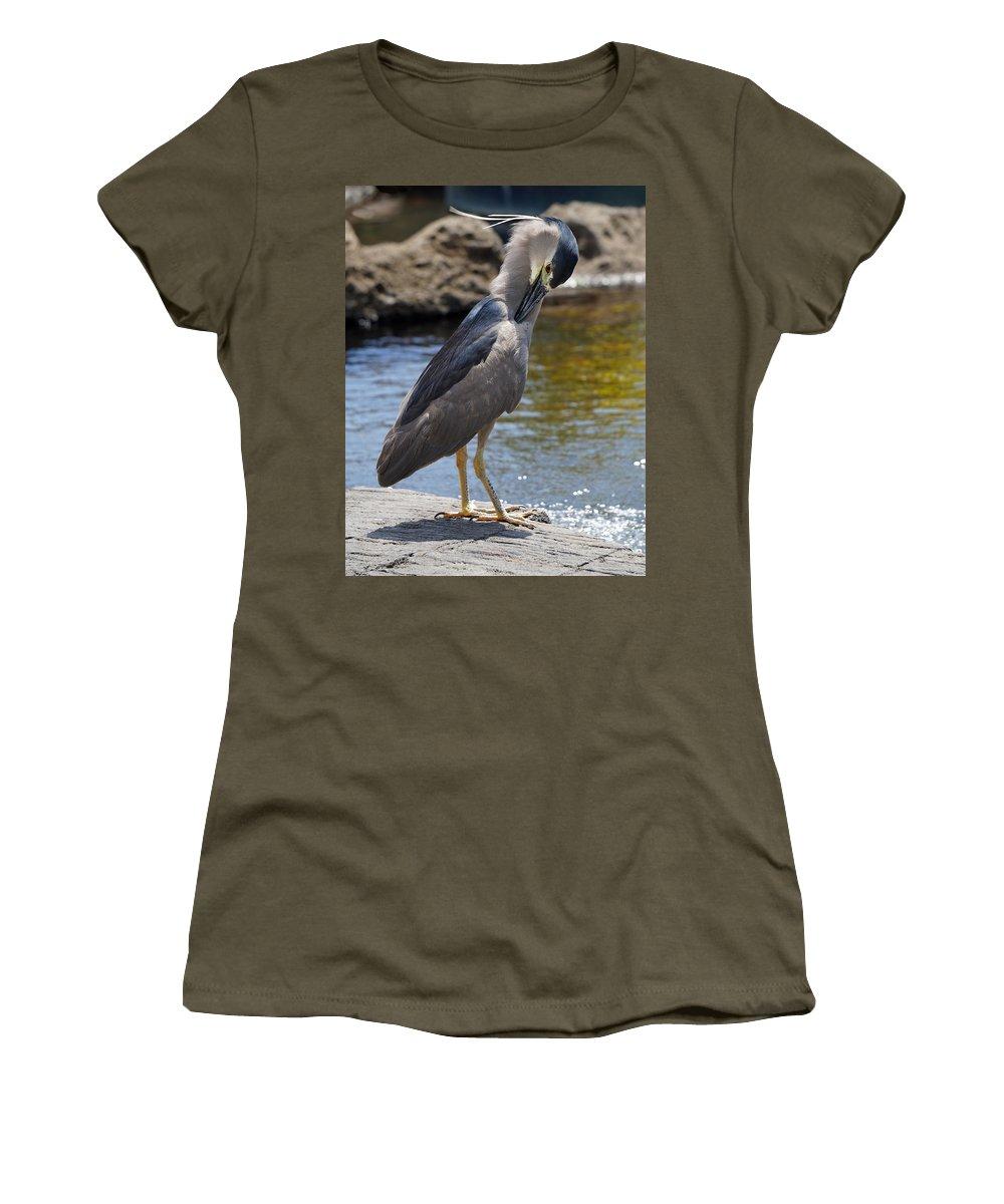 Pamela Walton Black Crowned Night Herron Women's T-Shirt featuring the photograph Blue Herron by Pamela Walton