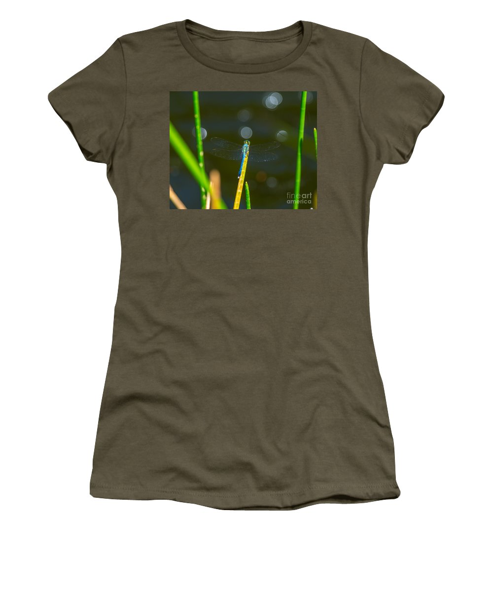 Dragonfly Women's T-Shirt featuring the photograph Blue Wings by Stephen Whalen