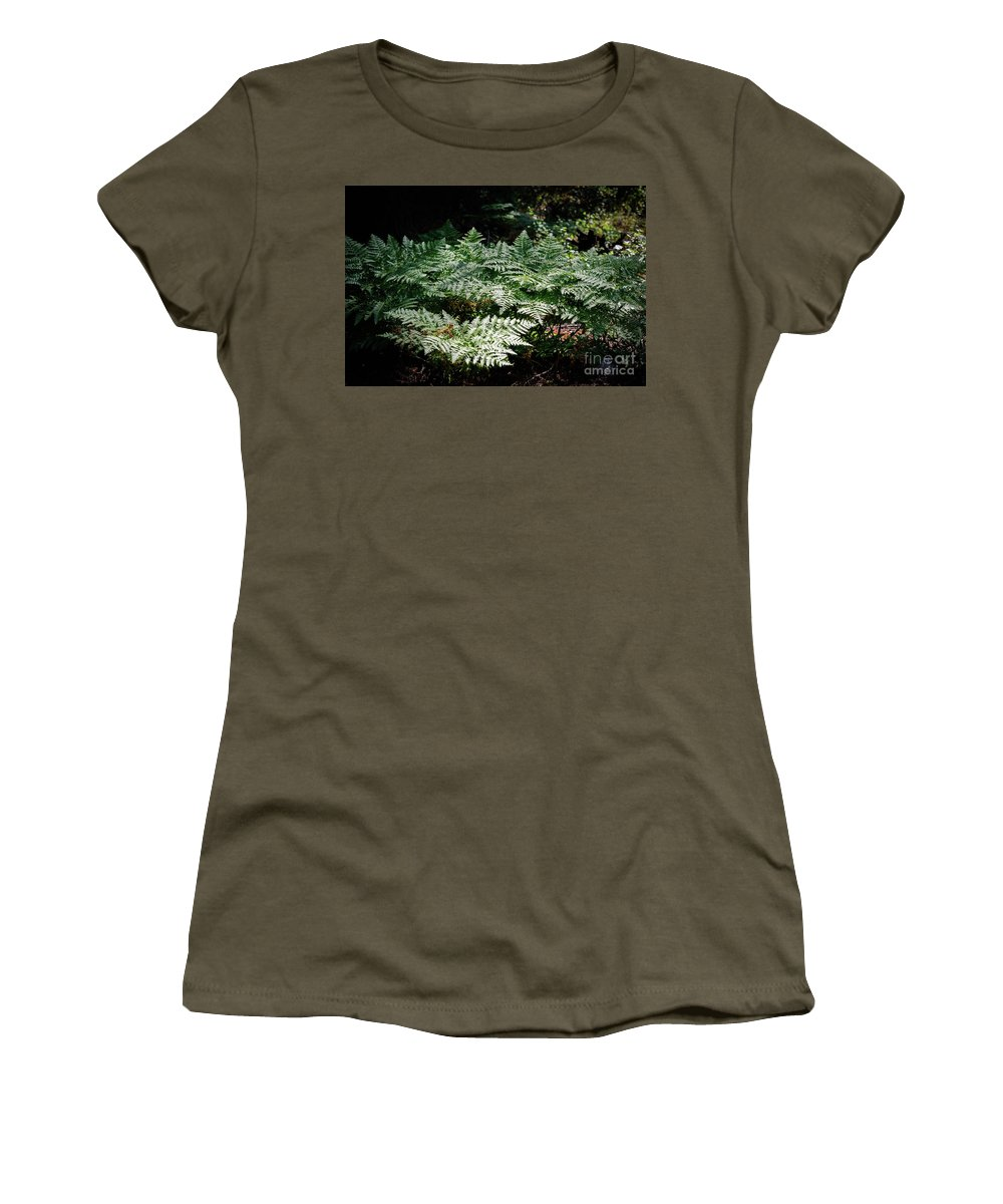 August 2017 Women's T-Shirt featuring the photograph Bracken Fern Afternoon by Jeffrey Hubbard