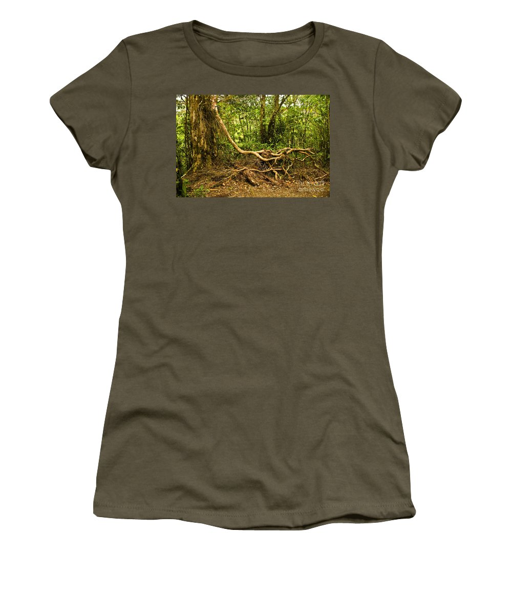 Tree Women's T-Shirt featuring the photograph Branching Out In Costa Rica by Madeline Ellis