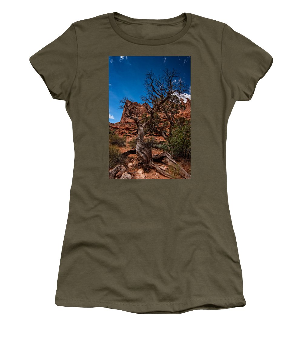Arches National Park Women's T-Shirt featuring the photograph Bristlecone On Park Avenue by Rick Berk