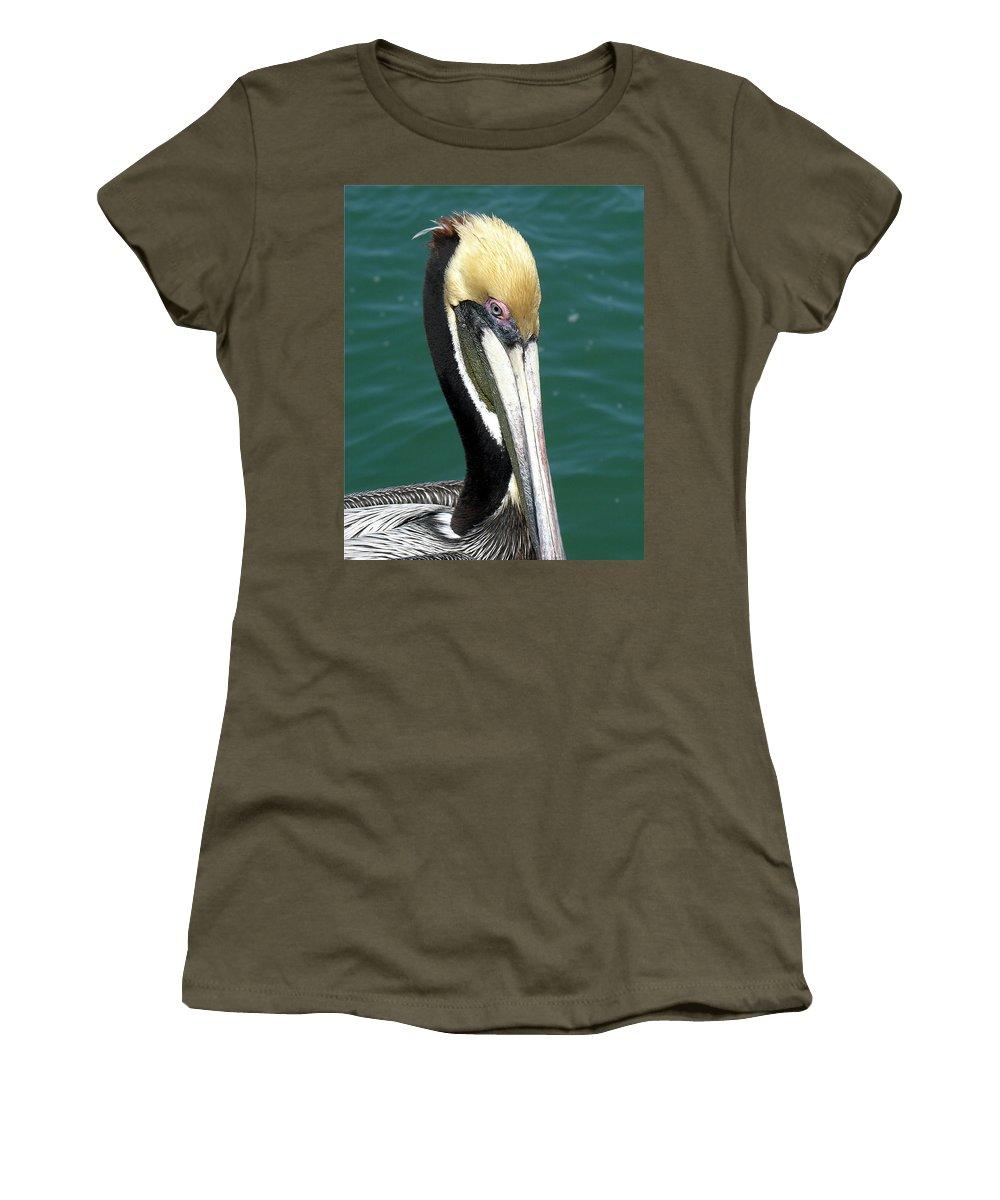 Pelecanus; Occidentalis; American; Brown; Pelican; Bird; Sea; Seabird; Ocean; Space; Coast; Cape; Ca Women's T-Shirt featuring the photograph Brown Pelican by Allan Hughes