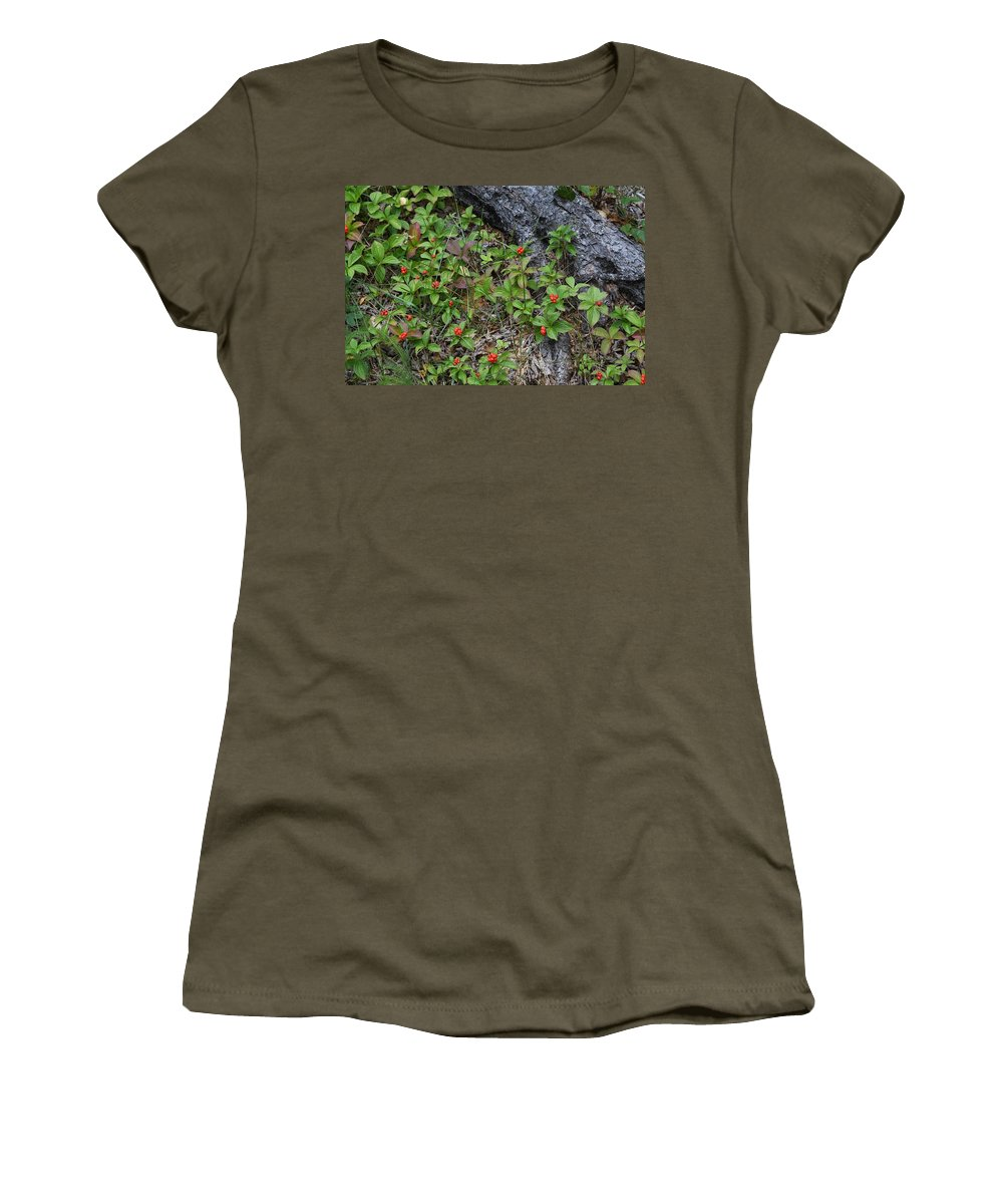 North Shore Women's T-Shirt featuring the photograph Bunchberry Berries by Hella Buchheim