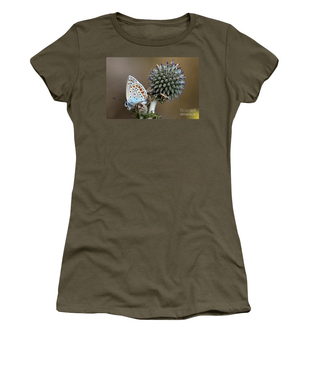 Butterfly Women's T-Shirt (Athletic Fit) featuring the photograph butterfly on a Echinops adenocaulon by Nahum Budin