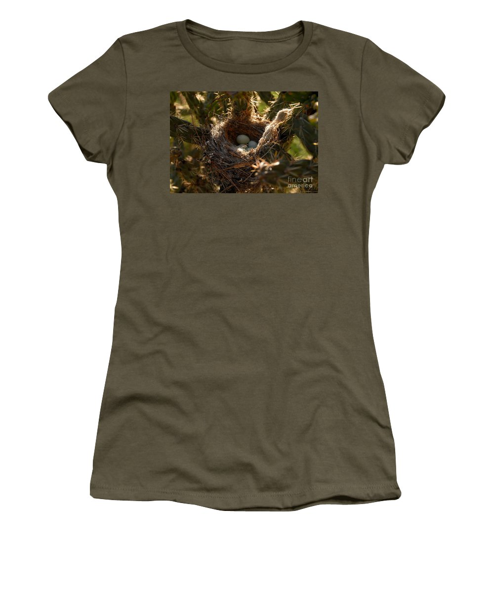 Cactus Women's T-Shirt featuring the photograph Cactus Nest by David Lee Thompson