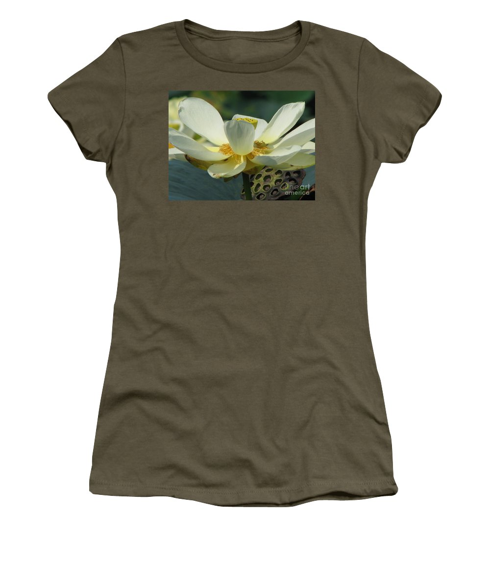Lotus Women's T-Shirt featuring the photograph Calm by Amanda Barcon