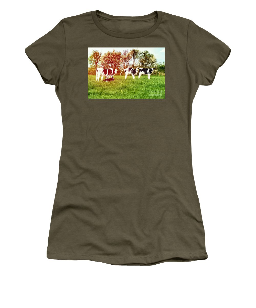 Farming Women's T-Shirt featuring the photograph Calves In Spring Field by Amanda Elwell