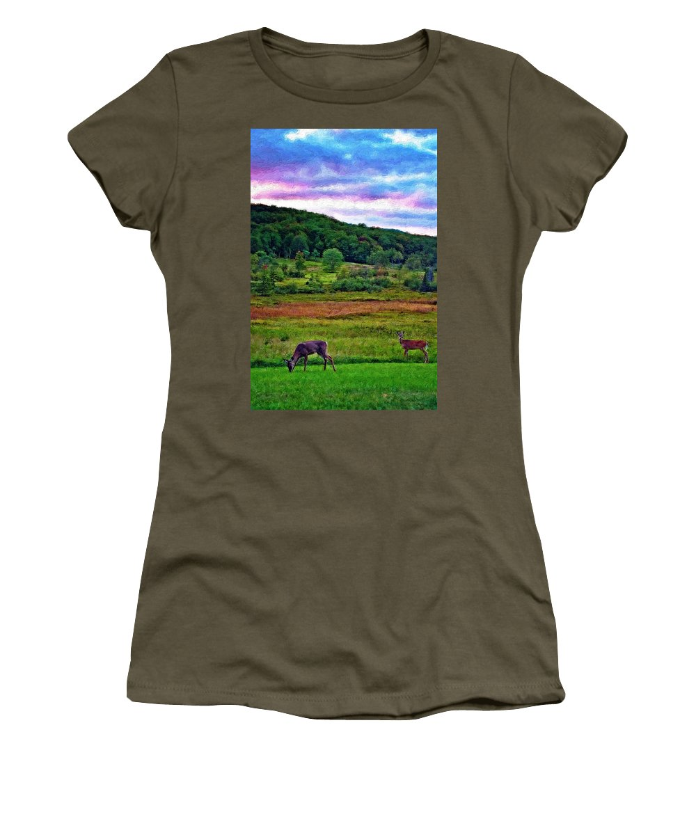 West Virginia Women's T-Shirt featuring the photograph Canaan Valley Evening Impasto by Steve Harrington