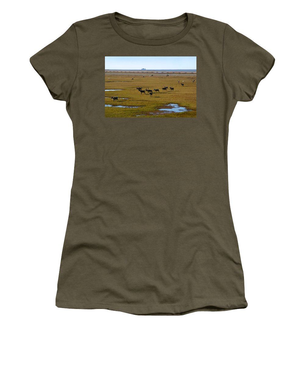 Caribou Women's T-Shirt (Athletic Fit) featuring the photograph Caribou Herd by Anthony Jones
