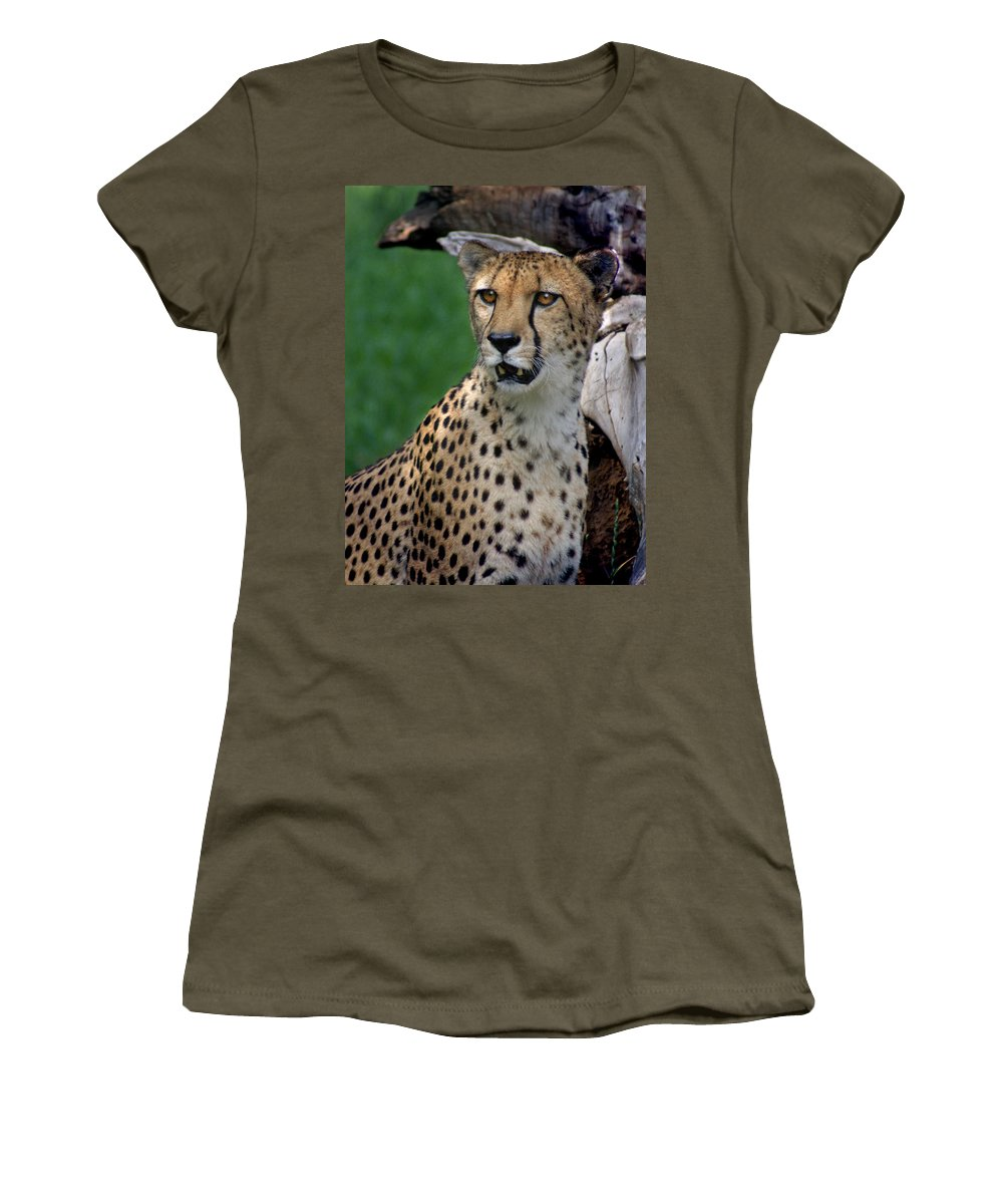 Cheeta Women's T-Shirt (Athletic Fit) featuring the photograph Cheetah by Heather Coen