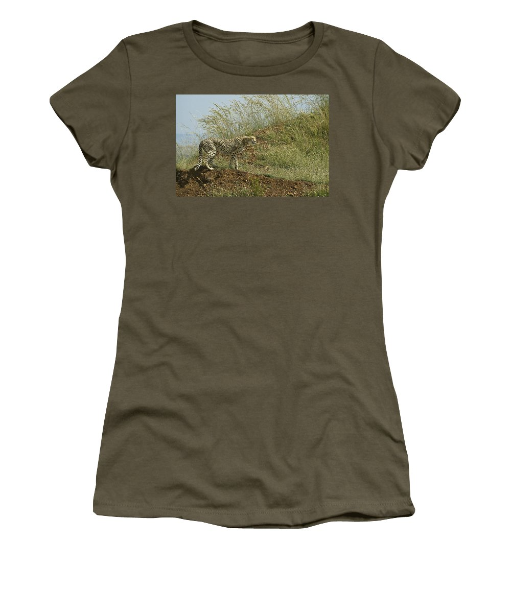 Africa Women's T-Shirt featuring the photograph Cheetah On The Prowl by Michele Burgess