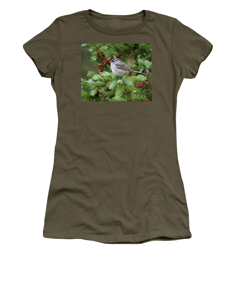 Chickadee Women's T-Shirt (Athletic Fit) featuring the photograph Chickadee by Heather Coen