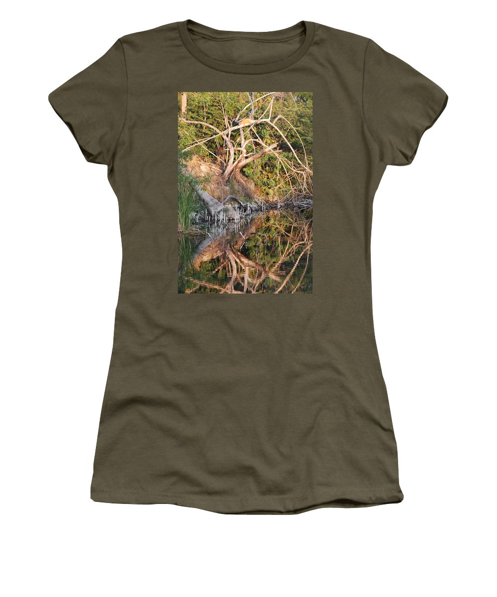 Iguana Women's T-Shirt featuring the photograph Chilling Iguana by Rob Hans