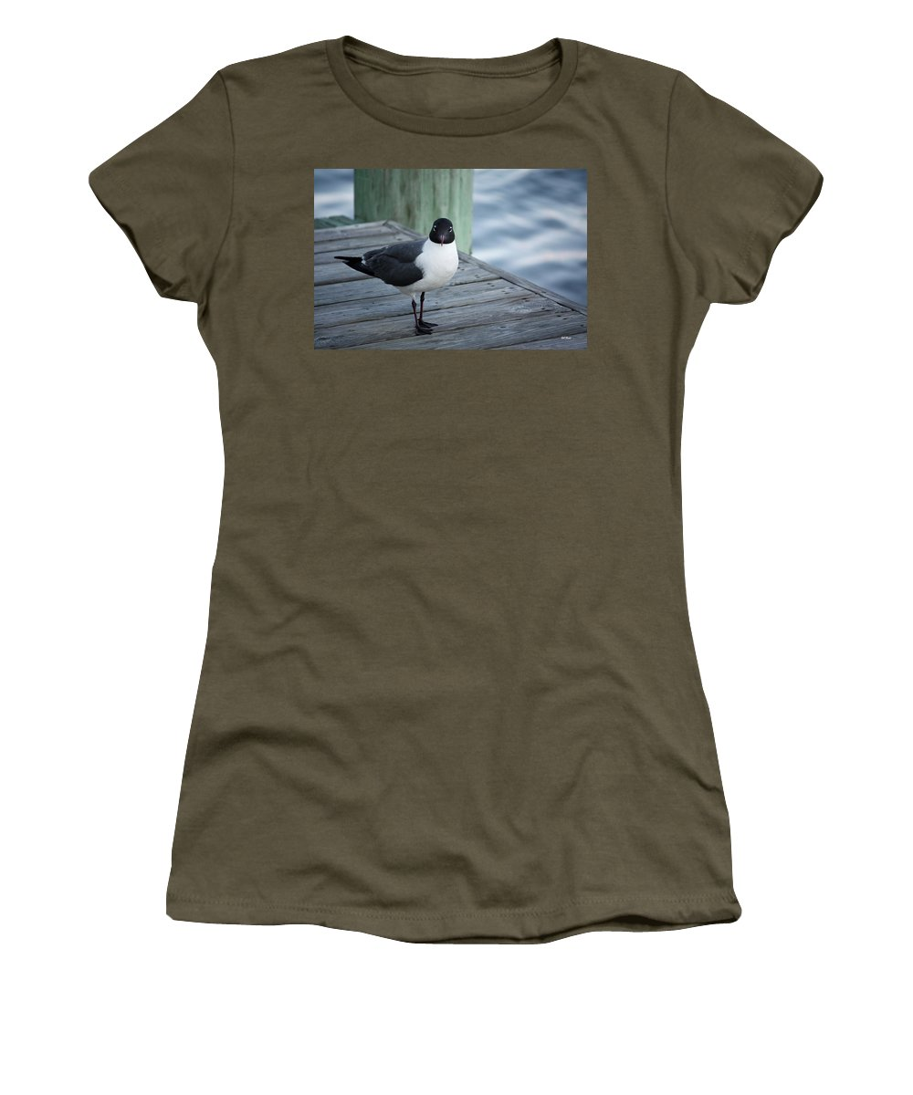 Maryland Women's T-Shirt featuring the photograph Chincoteague Island - Great Black-headed Gull by Ronald Reid