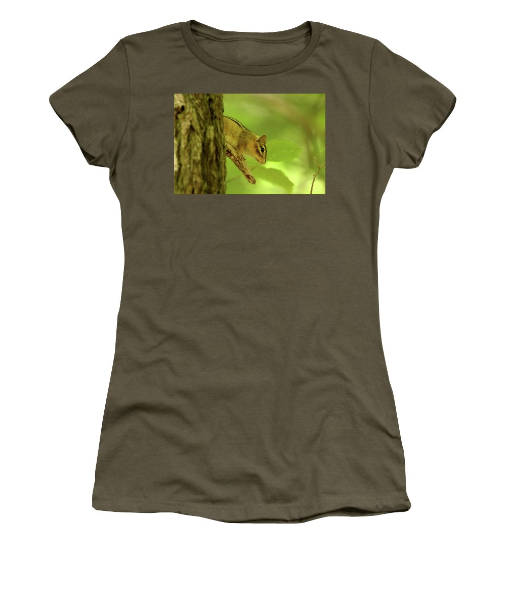 Chipmunk Women's T-Shirt featuring the photograph Chip by David Stasiak