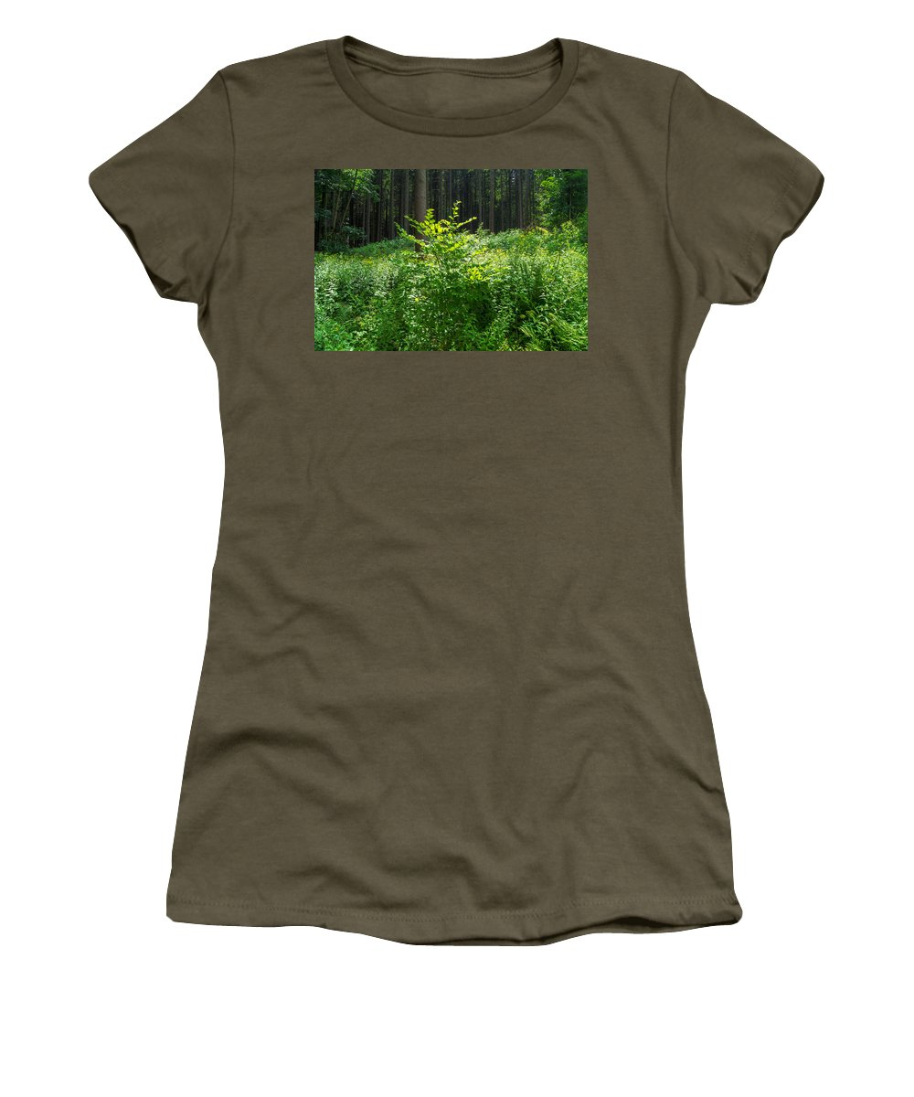 Forest Women's T-Shirt featuring the photograph Colors Of A Forest In Vogelsberg by Sun Travels