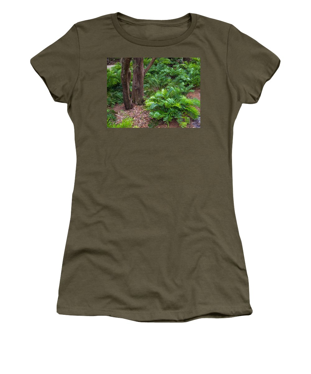 Florida; Coontie; Zamia; Integrifolia; Arrowroot; Indian; Bread; Breadroot; Plant; Rare; Wild; Prote Women's T-Shirt featuring the photograph Coontie Florida Arrowroot Or Indian Breadroot by Allan Hughes