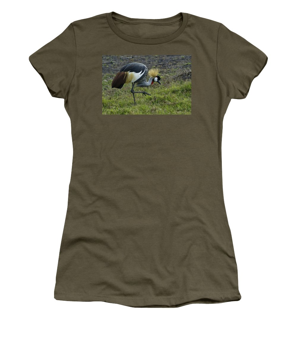 Africa Women's T-Shirt featuring the photograph Crowned Crane by Michele Burgess