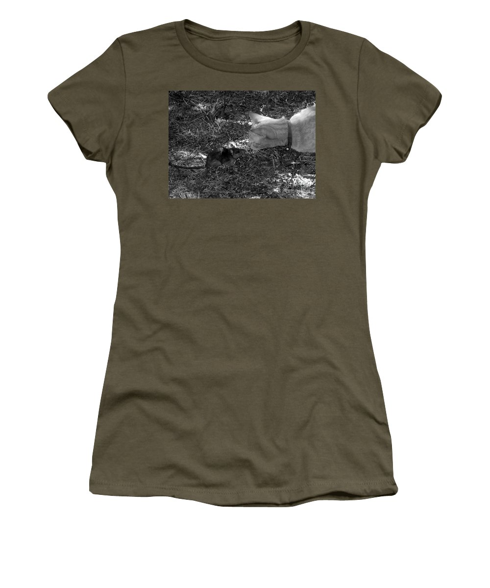 T Women's T-Shirt featuring the photograph Curious by David Lee Thompson