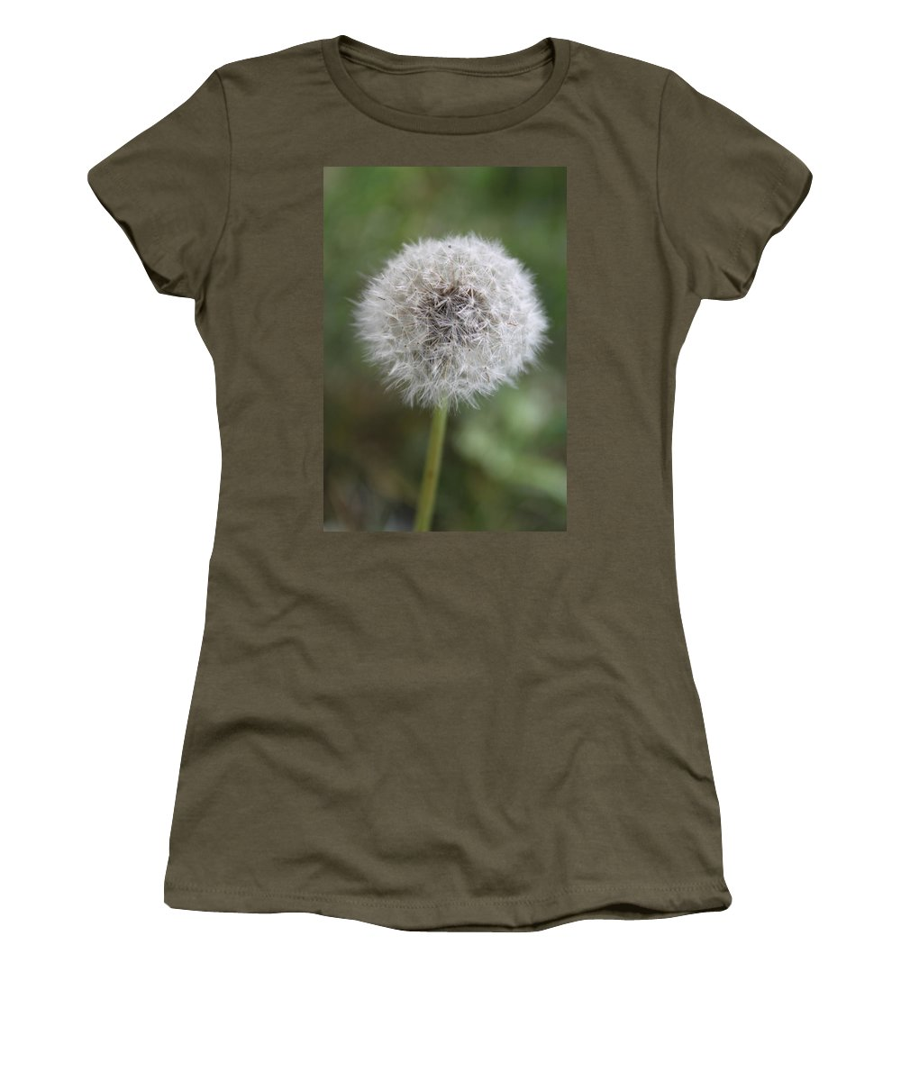 Dandelion Women's T-Shirt (Athletic Fit) featuring the photograph Dandelion by Lauri Novak