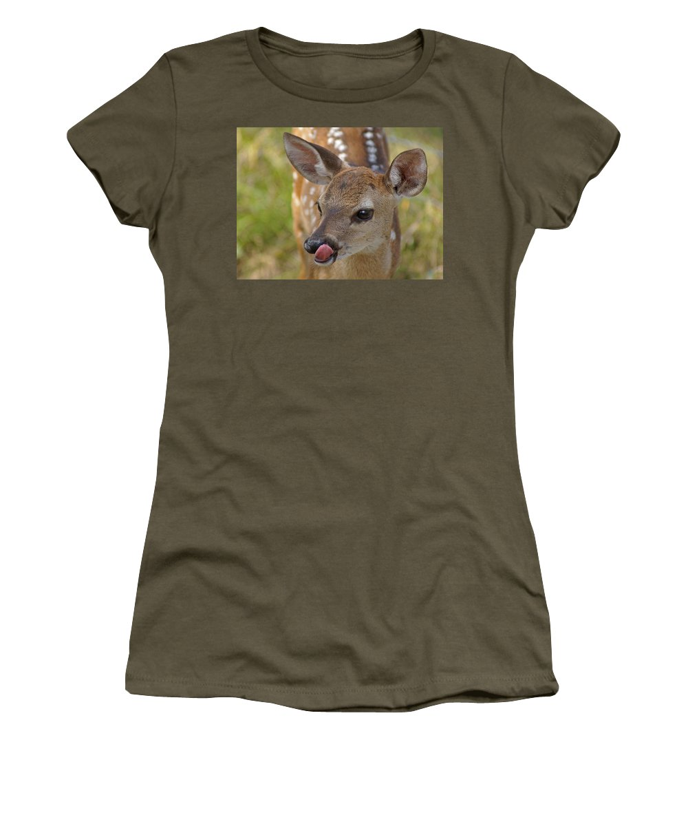Deer Women's T-Shirt featuring the photograph Delicious Deer by Heather Coen
