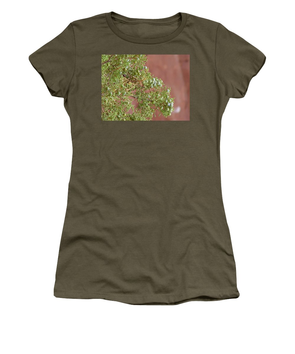 Arches National Park Women's T-Shirt (Athletic Fit) featuring the photograph Desert Elements 7 by Dawn Amber Hood