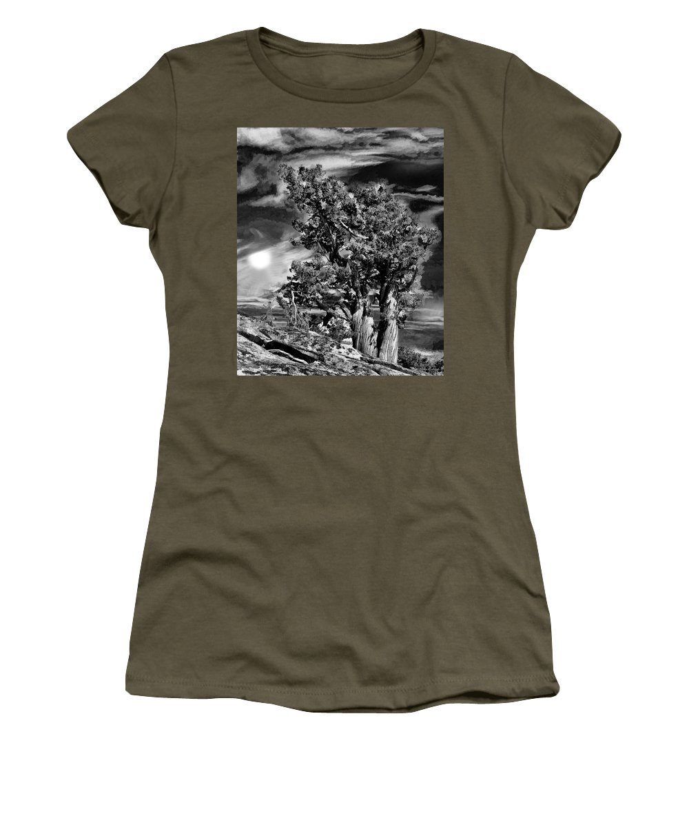 Women's T-Shirt featuring the photograph Deserted Tree by Blake Richards