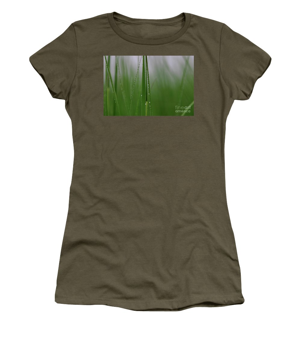 Grass Women's T-Shirt featuring the photograph Dew Drops by Karol Livote