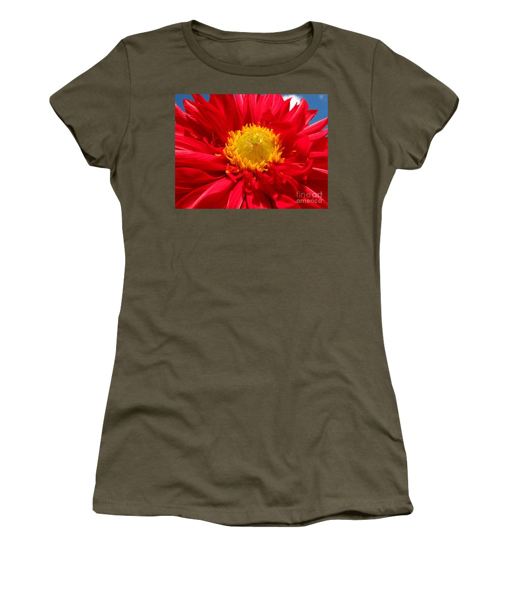 Dhalia Women's T-Shirt featuring the photograph Dhalia by Amanda Barcon
