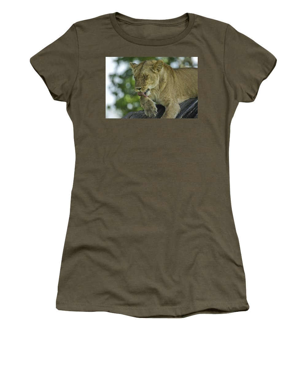 Africa Women's T-Shirt featuring the photograph Dirty Paws by Michele Burgess