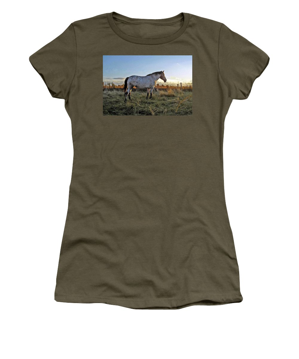 Appaloosa Women's T-Shirt featuring the photograph Distant Thoughts by Susan Baker