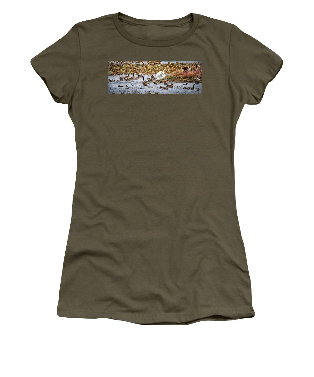 Waterfowl Women's T-Shirt featuring the photograph Diversity by Ray Congrove