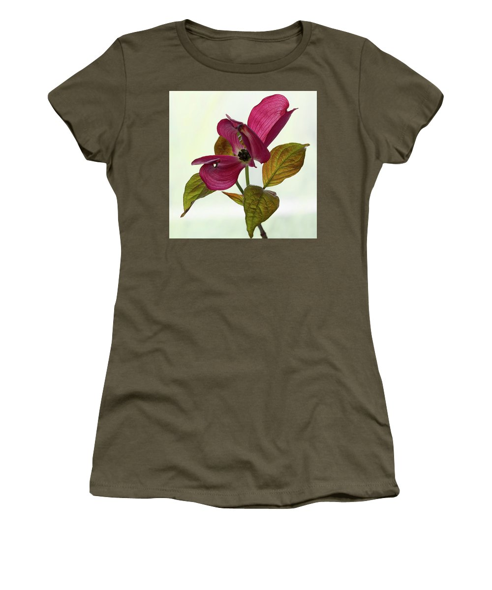 Floral Women's T-Shirt (Athletic Fit) featuring the photograph Dogwood Ballet 1 by Shirley Mitchell