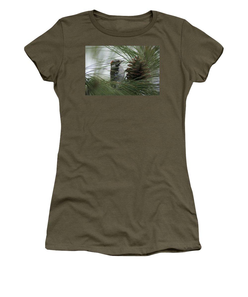 Birds Women's T-Shirt featuring the photograph Downy Woodpecker by Ben Upham III