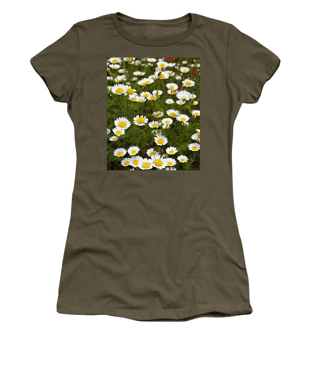 Daisy Women's T-Shirt featuring the photograph Dozens Of Daisies by Marilyn Hunt