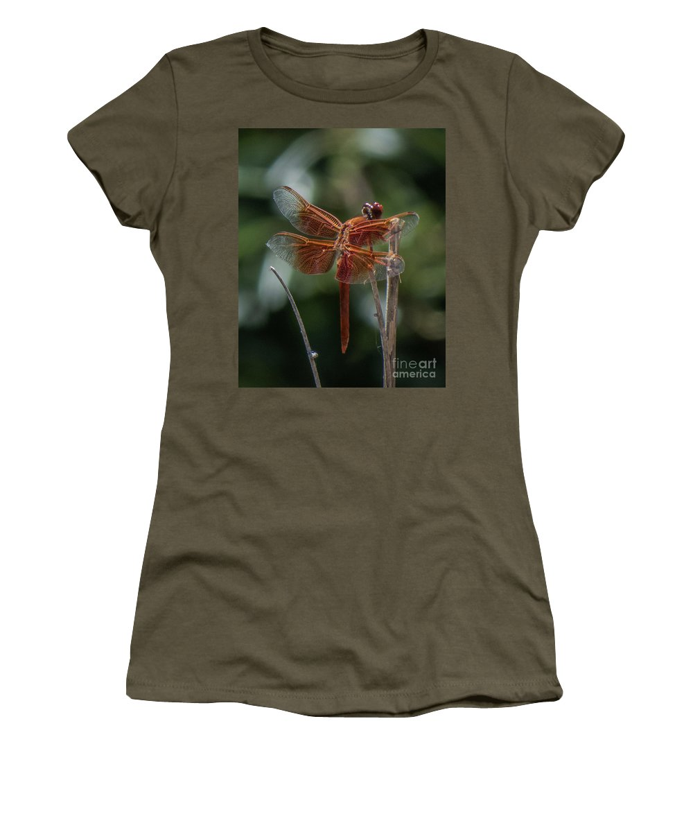 Dragonfly Women's T-Shirt (Athletic Fit) featuring the photograph Dragonfly 9 by Christy Garavetto